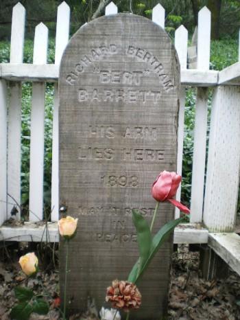Bert's Arm - Hacienda Cemetery