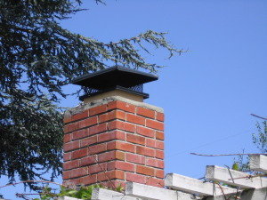 chimney-top-with-spark-arrestor-and-rain-cap
