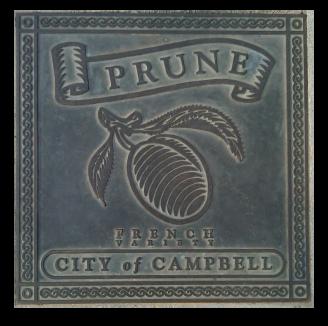 Fruit - Campbell - Prune