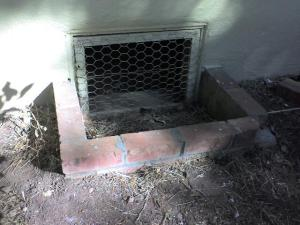 Crawl space access on the outside (older home)