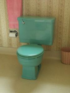 turquoise toilet