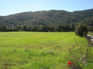 Morgan Hill land for sale along the Uvas River