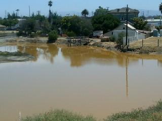 Muddy water at the Alviso Marina in San Jose