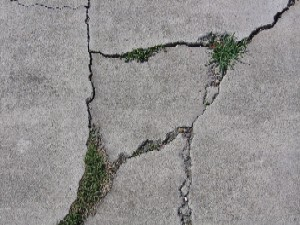 cement-cracks-with-grass
