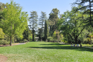 Montalvo Arts Center Grounds