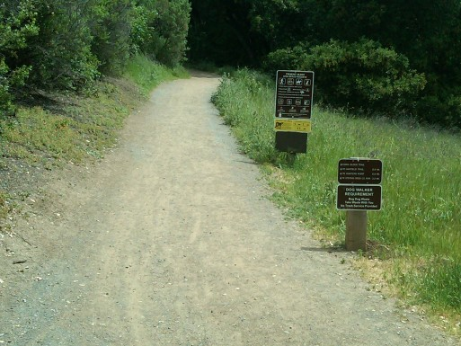 Fremont Older Trailhead