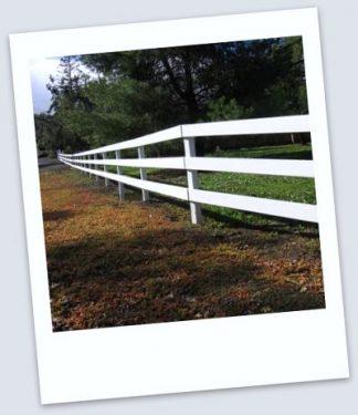 white horse fence