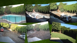 Pool removal collage
