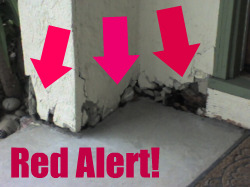 Willow Glen Crumbling Foundation Red Flags