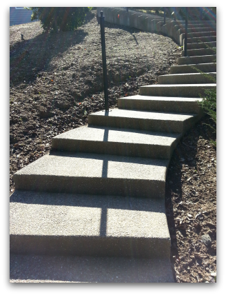 Steps need handrail