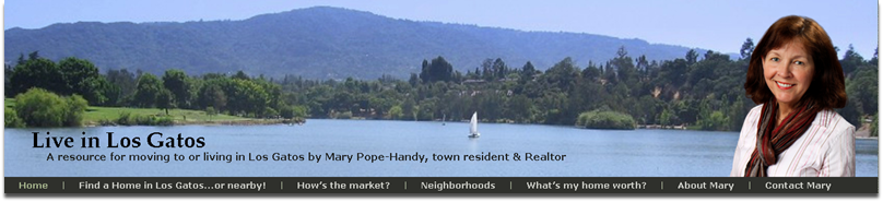 Live in Los Gatos Blog