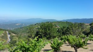 Cupertino - view from Ridge Vineyards