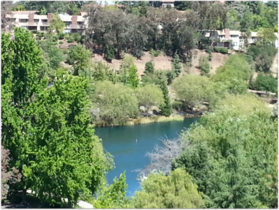 Rinconada Hills in Los Gatos HOA dues covers pools, tennis courts, ponds, walking trails, a clubhouse, RV parking, and more.