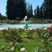 The beautiful water fountain is the centerpiece of the San Jose Municipal Rose Garden, an area of price San Jose real estate and very prized neighborhood