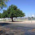 Alta Vista School Softball Field