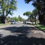 Alta Vista Street Tree Lined 1