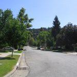 Alta Vista Street Tree Lined 2