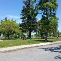 Butcher Park San Jose CA 95124