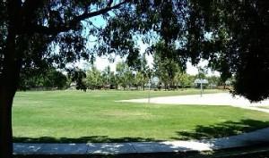 The Willows - Rubino-Park-basketball-areas-