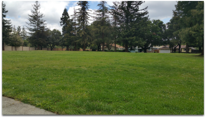 Large lawn area at Saratoga Creek Park in the Country Lane neighborhood in San Jose CA 95129