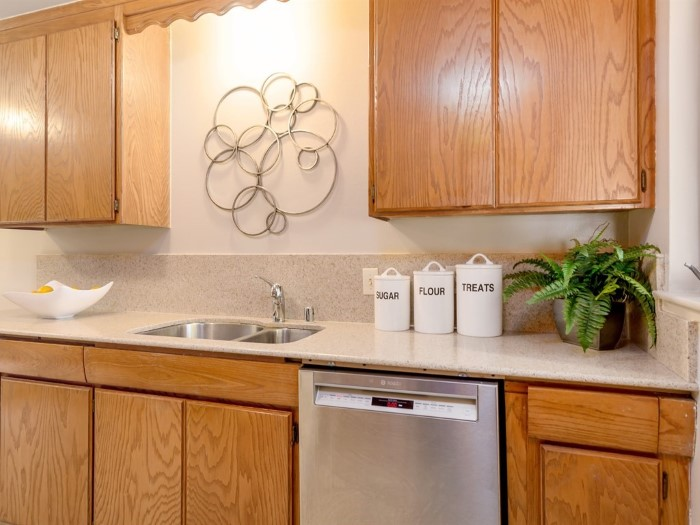 Kitchen featuring stainless steel sink, dishwasher, and hood