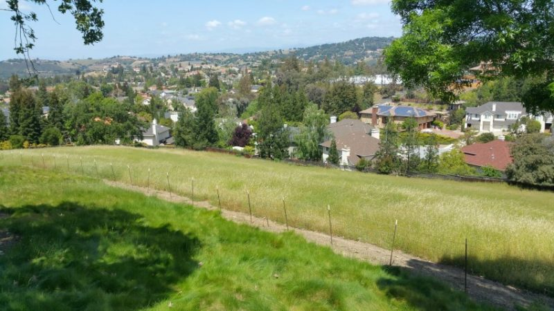 Open space view from Almaden Valley's California Ridge town house community