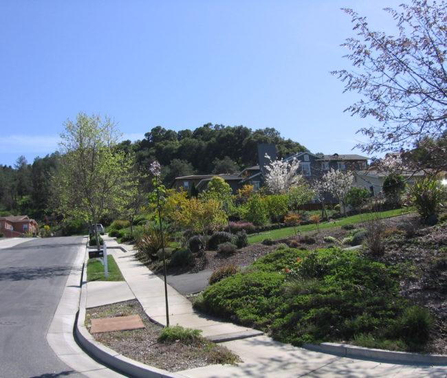 10 Another neighborhood view