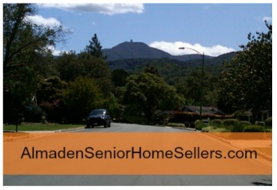 Almaden Senior Home Seller with Mt Um