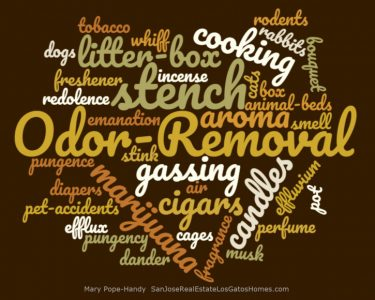 Odor Removal word balloon by Mary Pope-Handy
