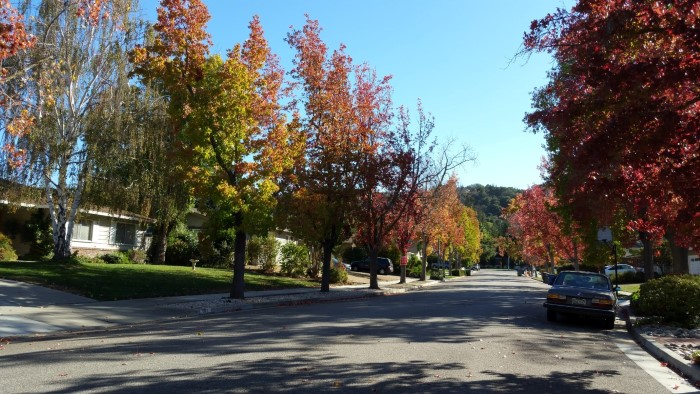 Panorama Way adjacent street but to the Strathmore neighborhood of Los Gatos