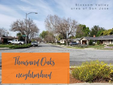 Thousand Oaks neighborhood - corner view