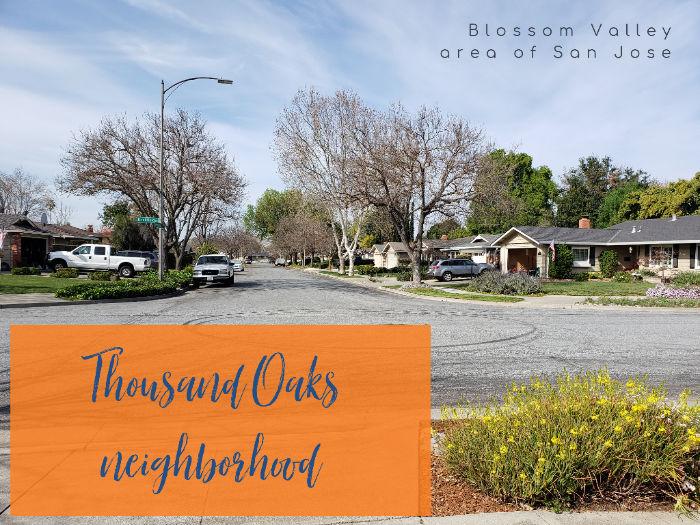 Thousand Oaks Neighborhood