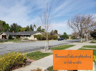 Thousand Oaks neighborhood - late winter view