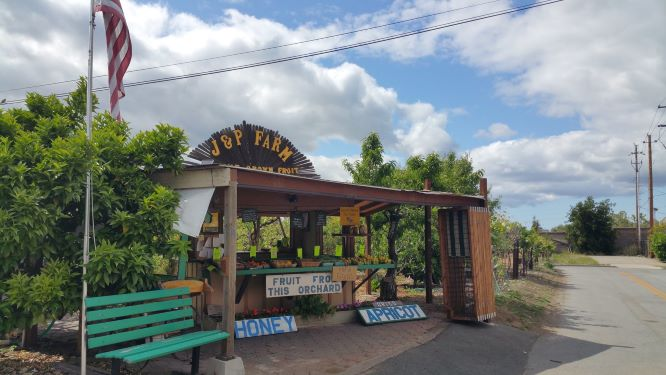 J & P Cosentino Family Farm stand in Cambrian